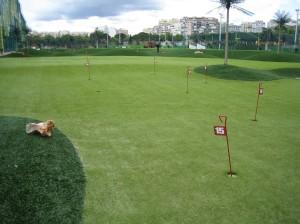 Golf Course 008